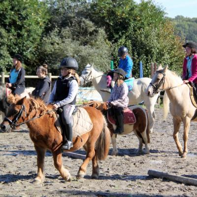 Les poneys 1
